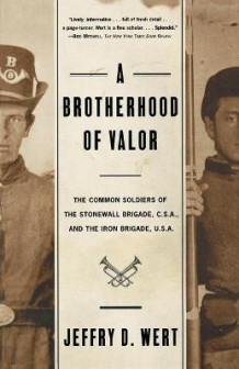 Brotherhood of Valor T av Jeffrey D. Wert (Heftet)