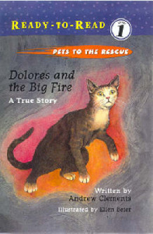Dolores and the Big Fire av Andrew Clements (Innbundet)