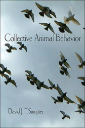 Collective Animal Behavior av David J. T. Sumpter (Heftet)