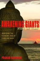 Awakening Giants, Feet of Clay av Pranab Bardhan (Heftet)