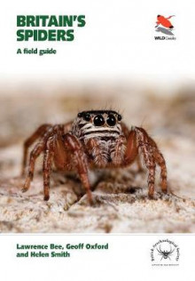 Britain's Spiders av Lawrence Bee, Geoff Oxford og Helen Smith (Heftet)