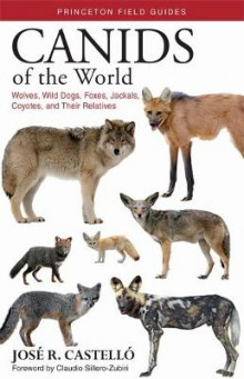 Canids of the World av Dr. Jose R. Castello (Heftet)