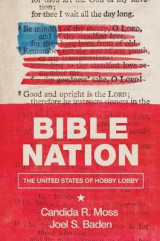Omslag - Bible Nation