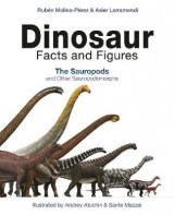 Omslag - Dinosaur Facts and Figures