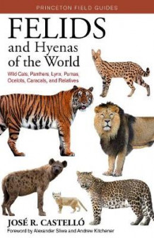 Felids and Hyenas of the World av Dr. Jose R. Castello (Heftet)