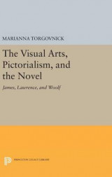 Omslag - The Visual Arts, Pictorialism, and the Novel