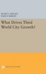 Omslag - What Drives Third World City Growth?