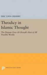 Omslag - Theodicy in Islamic Thought