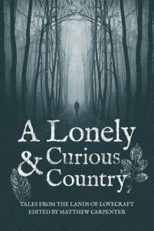 A Lonely and Curious Country av Matthew Carpenter, Steven Prizeman og Sean Farrell (Heftet)