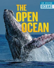The Open Ocean av Claudia Martin (Innbundet)
