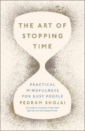 The Art of Stopping Time av Pedram Shojai (Innbundet)