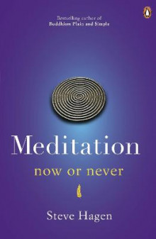 Meditation Now or Never av Steve Hagen (Heftet)