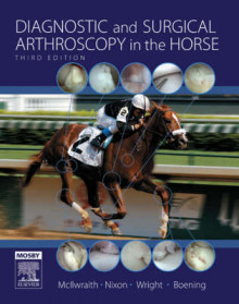 Diagnostic and Surgical Arthroscopy in the Horse av C. Wayne McIlwraith, Ian Wright, Alan J. Nixon og K. Josef Boening (Innbundet)