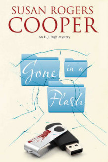 Gone in a Flash av Susan Rogers Cooper (Innbundet)