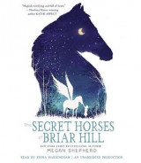 Omslag - The Secret Horses of Briar Hill
