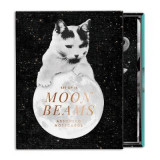 Omslag - Moonbeams Greeting Card Assortment