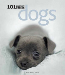 Dogs: 101 Adorable Breeds av Rachael Hale (Innbundet)