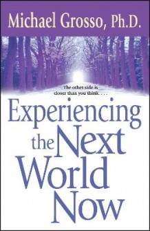 Experiencing the Next World Now av Michael Grosso (Heftet)