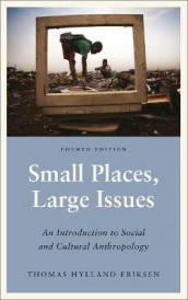 Small Places, Large Issues - Fourth Edition av Thomas Hylland Eriksen (Heftet)