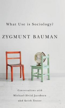 What Use is Sociology? av Zygmunt Bauman, Professor Michael Hviid Jacobsen og Professor Keith Tester (Innbundet)
