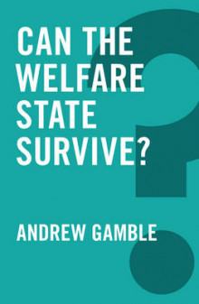 Can the Welfare State Survive? av Andrew Gamble (Heftet)