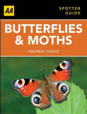 Butterflies and Moths av Cleave (Heftet)