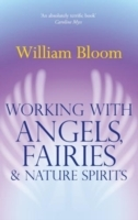 Working With Angels, Fairies And Nature Spirits av William Bloom (Heftet)