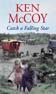 Catch a Falling Star av Ken McCoy (Heftet)
