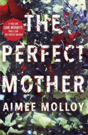 The Perfect Mother av Aimee Molloy (Heftet)