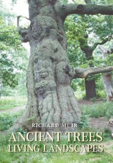 Ancient Trees av Richard Muir (Heftet)