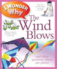 I Wonder Why the Wind Blows av Anita Ganeri (Heftet)