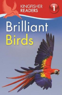 Kingfisher Readers: Brilliant Birds (Level 1: Beginning to Read) av Thea Feldman (Heftet)