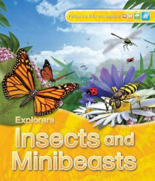 Explorers: Insects and Minibeasts av Jinny Johnson (Heftet)