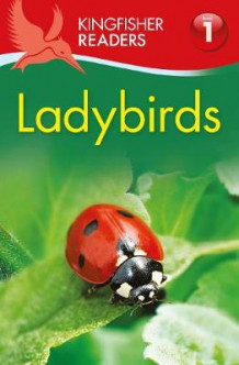 Kingfisher Readers: Ladybirds (Level 1: Beginning to Read) av Thea Feldman (Heftet)