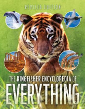 Kingfisher Encyclopedia of Everything av Sean Callery, MR Clive Gifford og Dr Mike Goldsmith (Heftet)