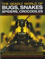 The Deadly World of Bugs, Snakes, Spiders, Crocodiles and Hundreds of Other Amazing Reptiles and Insects av John Farndon, Dr Jen Green og Barbara Taylor (Innbundet)