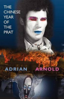 The Chinese Year of the Prat av Adrian Arnold (Heftet)