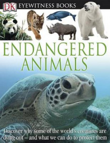 Endangered Animals av Ben Hoare (Innbundet)