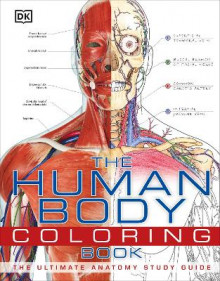 The Human Body Coloring Book av DK Publishing (Heftet)