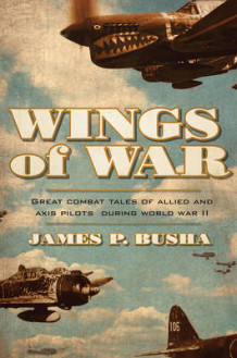 Wings of War av James P. Busha (Innbundet)