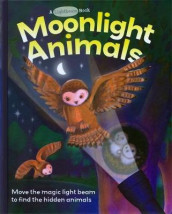 Moonlight Animals av Elizabeth Golding og Ali Lodge (Innbundet)