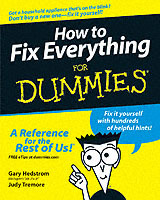 How to Fix Everything For Dummies av Gary Hedstrom, Peg Hedstrom og Judy Tremore (Heftet)
