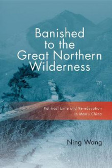 Banished to the Great Northern Wilderness av Ning Wang (Innbundet)