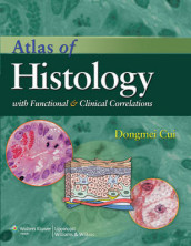 Atlas of Histology with Functional and Clinical Correlations av Dongmei Cui, William P. Daley, Jonathan D. Fratkin, Duane E. Haines, James C. Lynch, John P. Naftel og Gongchao Yang (Heftet)