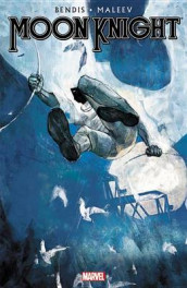 Moon Knight By Brian Michael Bendis & Alex Maleev - Vol. 2 av Brian M Bendis (Innbundet)