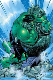 Incredible Hulk: Past Perfect av Paul Jenkins, John Romita og Sean McKeever (Heftet)