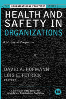 Health and Safety in Organizations (Innbundet)