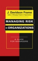 Managing Risk in Organizations av J. Davidson Frame (Innbundet)