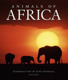 Animals of Africa av Thomas B. Allen og Jane Goodall (Innbundet)