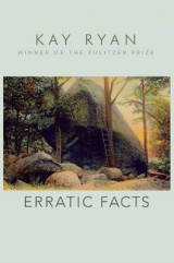 Omslag - Erratic Facts